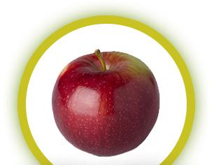 apple-sugar-empire